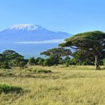 dreamstime_xs_53763902 Mount Kilimanjaro